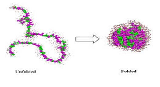 aktivt sete enzym