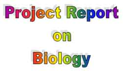 Biology Projects| Project Report on Biology| Biology Topics